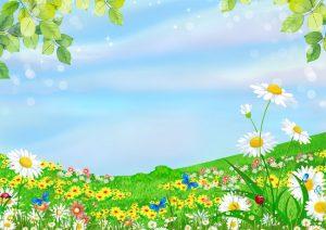 زنبور عسل | قصه های کودکانه